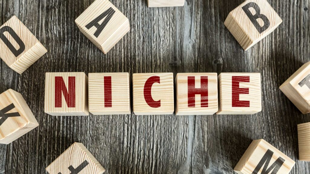 How to earn money blogging, How to select niche for a blog